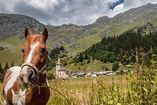 Dégustation de produits locaux ... Champagny-Le-Haut (1554 m) * (Vanoise  - Savoie 07/2018)