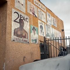 Wall of Fame (ADMurr) Tags: la southla social club walloffame tupac jamesbrown marilyn stylistics billie holiday sonny walterpayton rolleiflex 35 e kodak ektar overcast afternoon zeiss planar 6x6 2017 daa514 joelouis martinandmalcolm 2pac