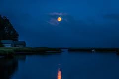 Blue Blood (Whale24) Tags: fullmoon capecod nationalseashore eastham saltpond massachusetts moonrise blue reflection reflectionsinwater