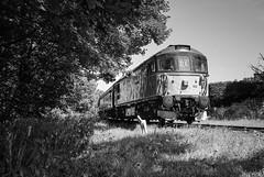 33103 Summerseat R00308 D210bob DSC_0321 (D210bob) Tags: 33103 summerseat r00308 d210bob dsc0321 railwayphotographs railwayphotography railwayphotos railwaysnaps class33 nikond80 nikon passengertrain londonmidlanddivision northwestrailways eastlancsrailway blackwhitephotography blackwhite monochrome monochromephotography