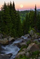 Moonrise in the Mountains.(Mt Rainier NP, Paradise, WA) (Sveta Imnadze) Tags: edithcreek mtrainiernp wa paradise