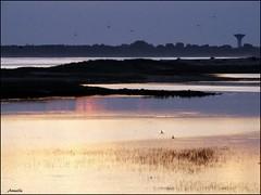 Peace of mind ! (Armelle85) Tags: extérieur nature paysage mer océan eau lagune crépuscule coucher de soleil sunset ombre lumière horizon zen