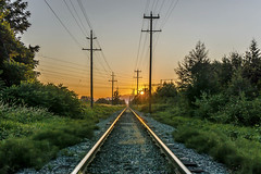 Sumas Sunrise (Paul Rioux) Tags: chilliwack bc railroad railway tracks outdoor sunrise morning dawn daybreak power lines poles rails rural country wires prioux