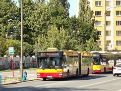 MAN NG313, #3906, MZA Warszawa (transport131) Tags: bus autobus ztm warszawa wtp man ng313 mza warsaw