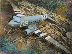 Invasion Stripes (drei88) Tags: wwii veterans airborne paratroopers c47 inadequacy memories sad life death moments light shadow fleeting energy war normandy invasion dday distress stained unbroken aged weathered