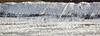 Salt looking like snow (Birdwatcher18) Tags: salt saltflat saltpan nature naturalsalt