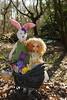 Happy Easter! (Little little mouse) Tags: fairlaryssa kayewiggs primrosebramblethorn bjd dollfie competitionwin factoryfaceup easterbunny