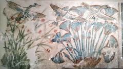 Amarna art at Neues Museum Berlin (Amberinsea Photography) Tags: amarna amarnaart neuesmuseum berlin egyptianmuseumberlin amberinseaphotography ancientegypt ancient