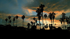 Sunset (shishirmishra1) Tags: sunset san diego sky city travel explore california coast beachfront beach blue landscape naturephotography natural