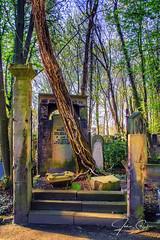 JS--97 (johan strijckers) Tags: berlin jewish cemetery overgrown