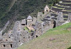 Machu Picchu (thomaspollin [thanks for 1.9 million views !!!]) Tags: thomaspollin thomas pollin amérique sud latine amériquedusud amériquelatine south america southamerica pérou peru péruvien