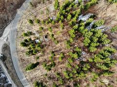 Droneshot (Vinc_1995) Tags: drone mavic mavicair dji drohne luftaufnahme beau beautiful beautifulearth green bäume tree wald nature naturephotography photography fotografie oberhuber
