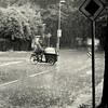 Rainy day (Bernhardt Franz) Tags: rainy rain regen regnerisch sturzflut street cyclist blackandwhite bw trees sign wolkenbruch downpour gush crossing
