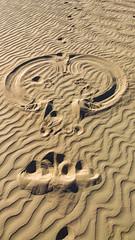 20180316_Death_Valley_phone_006 (petamini_pix) Tags: deathvalley deathvalleynationalpark california desert sand mesquitedunes sandpainting fun funny phoneography cameraphone lumia lumia1020 nokia