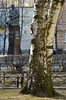 _ABB2078 (Rustam Bikbov) Tags: среднийпр санктпетербург апрель 2018 saintpetersburg april мусаджалиль памятник татарыпетербурга