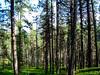 Lemmenjoki ja Kevo 2005 (piposilmilla) Tags: lemmenjoki vaellus