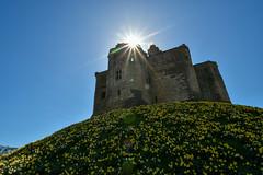 Warkworth Castle (scuba_dooba) Tags: northumberland warkworth castle north east england uk english heritage