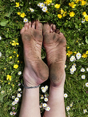Wild flower meadow (Barefoot Adventurer) Tags: barefoot barefooting barefoothiking barefooter barefeet barefooted baresoles barfuss anklet soles strongfeet stainedsoles wild buttercup livingleather leathersoles leathertoughsoles wrinkledsoles walking freedom connected earthsoles earthing earthstainedsoles healthyfeet happyfeet hardsoles toes texture tough arches hiking heelcracks ankles
