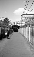 180422_009 (tohru_nishimura) Tags: bessar3a summicron502 cosina cv leica komabatodaimae train keio station tokyo japan