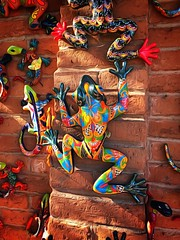 Forecast:  Slightly froggy in the morning; toadally clear by noon.... (Sherrianne100) Tags: decor colorful frogs sedona arizona
