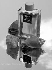 5524col400x297 (Len Miles) Tags: coco chanel cocochanel perfume reflection clove garliccloves