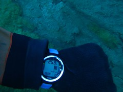 Chilling waters (CZDiver) Tags: underwater scubadiving scubagear divinggear