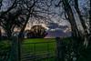 April Sunset (trevorhicks) Tags: westdevondistrict england unitedkingdom gb tavistock canon 5d mark iv gate leaf metal sunset outdoor spring