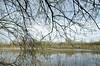 _DSC1150 (adrizufe) Tags: salburua vitoriagasteiz nature naturaleza greenblue landscape paisaje aplusphoto adrizufe adrianzubia visiteuskadi ilovenature araba basquecountry