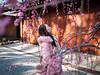 P1020222 (Mickey Huang) Tags: panasonic gx7 mk2 gx80 gx85 leica dg summilux 25mm f14 m43 mft kyoto japan 京都 日本 jonangu 城南宮 travel 旅行 bokeh plum blossom flowers light shadow girl
