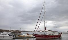 HI OCEAN ONE (G E Nilsen) Tags: hi ocean one msfinnmarken sailing vessel brønnøysund harbor sea clouds norway nordnorge northernnorway norwegiancoast