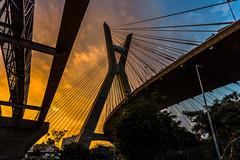 Pomte Estaiada - São Paulo (mariohowat) Tags: ponteestaiada marginalpinheiros sãopaulo sunset pôrdosol crepúsculo brasil brazil canon6d arquitetura