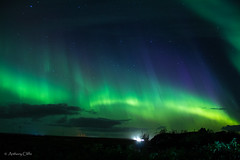 aurora borealis (anthonydcliffe) Tags: northernlights lights aurora night sky nature light amazing landscape stars colour space wonder travel adventure iceland borealis cloud show celestrial ionosphere colourful chill mountain astronomy background green red solar storm beauty extreme earth arctic canon outdoors water mother dance