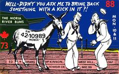 15800156 (myQSL) Tags: cb radio qsl card 1970s shepherd