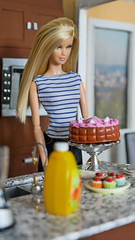 Summer's 29th Birthday (Fake Royalty) Tags: barbie tim gunn cake birthday doll