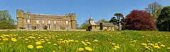 CROFT CASTLE (chris .p) Tags: castle herefordshire england nikon d610 view capture church uk croft 2018 spring history building grass may nt nationaltrust