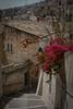 Empinadas calles. Moratalla. (Miguel Angel SGR) Tags: street calle rue rua pueblo ville village city ciudad cityscape stairs escalera roofs tejados travel trips tourism turismo touring viaje viajar trip tour tourist moratalla murcia españa spain europa europe ricon corner tipico typique nikon nikond3000 d3000
