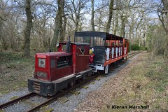 Stradbally, 25/3/18 (hurricanemk1c) Tags: railways railway train trains ireland industrialrailway narrowgauge stradbally stradballywoodlandsrailway 2018 ruston 4wd rusty rustonandhornsby esb portarlingtonworks 326052 listerhr6 electricitysupplyboard ruston48dl