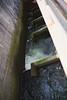 fish ladder from above (n.a.) Tags: salmon fish ladder ballard locks seattle wa us water