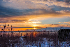Winter morning (Jens Haggren) Tags: winter morning sunrise sun sky clouds light sea seascape water reflections reed snow jetty pier landscape view nacka sweden olympus em1 jenshaggren