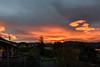 Glowing in the Light (Jocey K) Tags: newzealand nikond750 southisland akaora bankspeninsular landscape hills trees houses sunset clouds sea