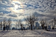 Iridescent Clouds (John Andersen (JPAndersen images)) Tags: bench calgary city clouds dogs sky snow tomcampbellhill tower trees winter