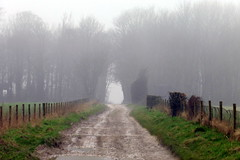 Into The Gloom (Alan1954) Tags: walking southdownsway sussex 2018 misty gloomy drizzle platinumheartaward