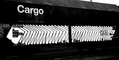 graffiti on freighttrains (wojofoto) Tags: amsterdam nederland netherland holland graffiti streetart freighttraingraffiti freighttrain fr8 vrachttrein cargotrain wojofoto wolfgangjosten delta blackandwhite monochrome zwartwit
