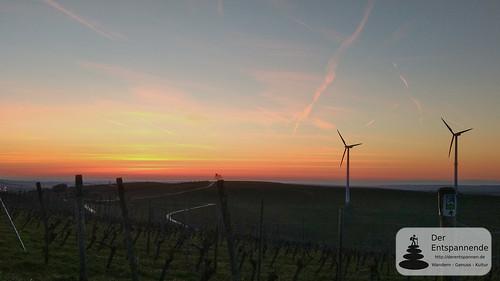 Sonnenaufgang über der Hiwweltour Zornheimer Berg