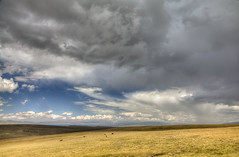 Kyrgyzstan Highlands (Joost10000) Tags: highlands kyrgyzstan asia centralasia mountians lake cattle clouds sky rain outdoors scenic beauty wild wilderness grass grassland son kul sonkul song songkul summer canon canon5d eos view