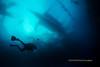 Diver and Snorkelers (kayak_no1) Tags: nikon d800e nauticamhousing 15mmsigmafisheye fisheye ysd1 underwater underwaterphotography wa wideangle diving scubadiving uw moalboal philippines diver photographer