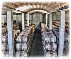 Roa 15/01/2004: Invecchiamento dei vini  nelle botti di Rovere (paolocannas) Tags: bodegasduron roa burgos castigliayleon spagna