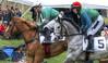 Steeple Chase (It's my whole damn raison d'etre) Tags: steeple chase horse race equine loudoun county horses virginia oatlands leesburg va fox hunt single frame hdr nikon d800e alex erkiletian