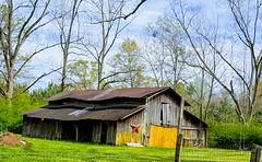 "The ""Star"" Barn (djbullet985) Tags: barn tin rust decay neglect trees spring sky clouds alabama"