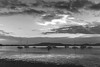 Sunrise Waterscape with Boats in Black and White (Merrillie) Tags: daybreak sunrise nature dawn tascott overcast foreshore newsouthwales clouds koolewong nsw brisbanewater bay morning cloudy earlymorning water coastal landscape outdoors waterscape boats centralcoast australia sky